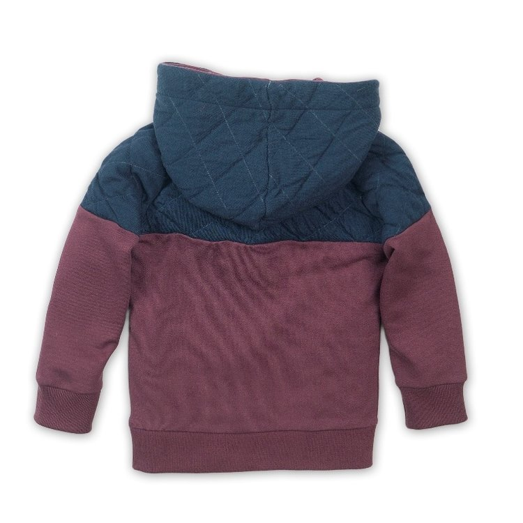 Boys sweater blue with hood   D36822-37
