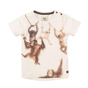 Koko Noko jongens T-shirt wit