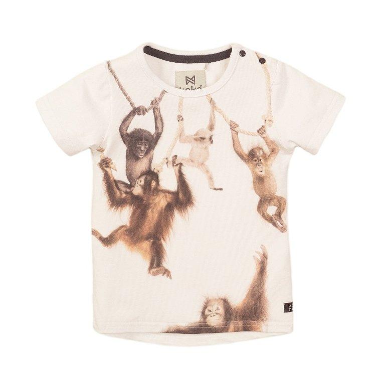 Koko Noko boys T-shirt white | E38836-37