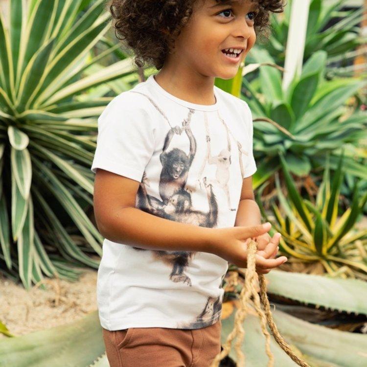 Koko Noko Jungen T-shirt weiß | E38836-37
