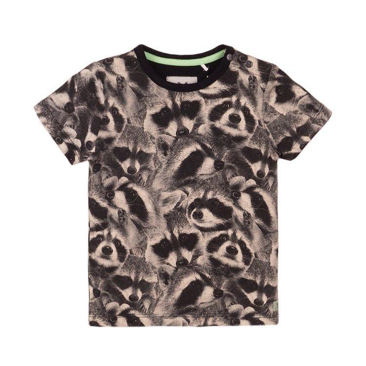 Koko Noko Jungen T-shirt grau Waschbär   E38843-37