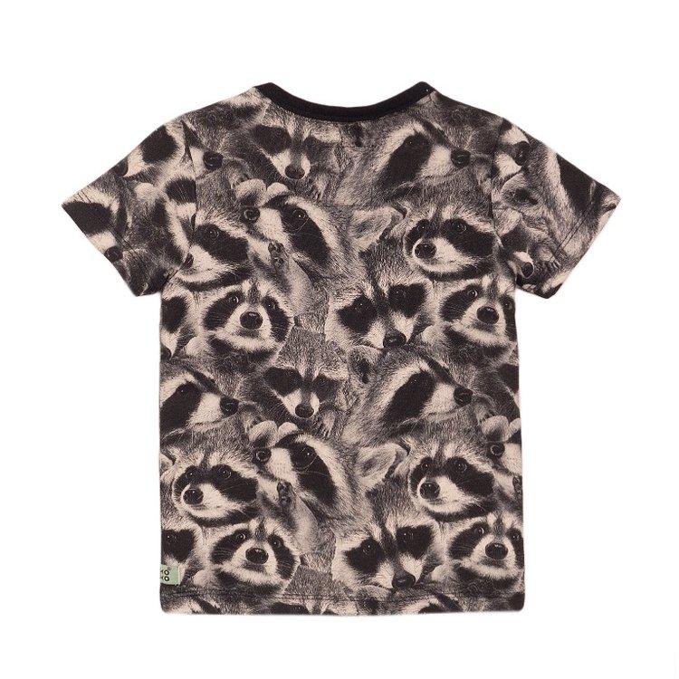 Koko Noko jongens T-shirt grijs wasbeer   E38843-37