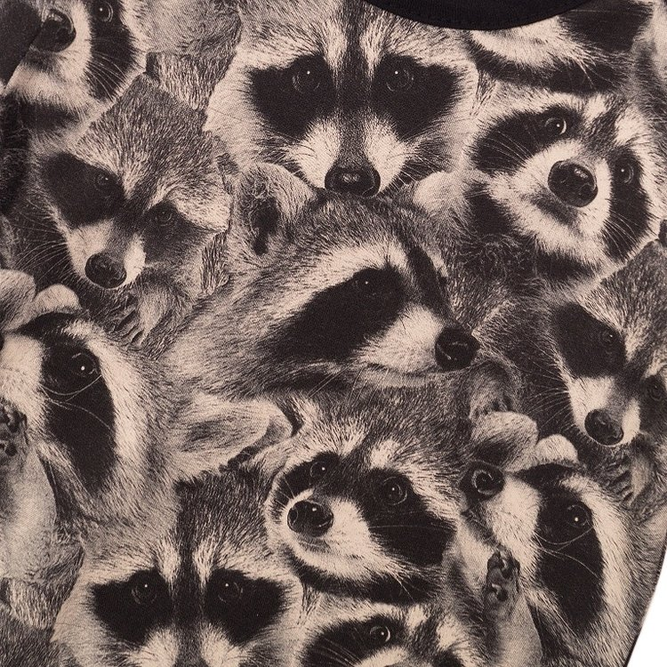 Koko Noko boys T-shirt grey raccoon | E38843-37