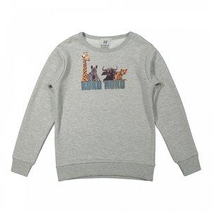 Koko Noko Jungen Pullover grau