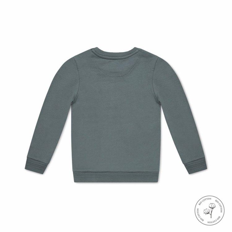 Koko Noko Sweatshirt Neill für Jungen grün | N802