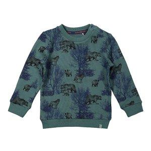 Koko Noko Jungen Pullover grün