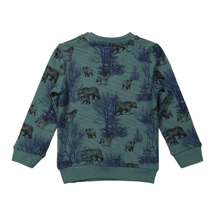 Koko Noko boys sweater green | F40803-37
