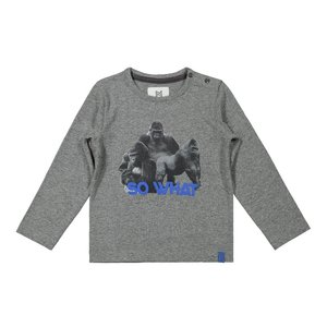 Koko Noko jongens shirt grijs gorilla