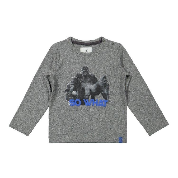 Koko Noko Jungen Shirt grau Gorilla | F40862-37