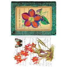 Redesign with Prima Redesign - Decor Transfer - Wondrous Flora