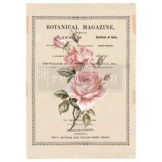 Redesign with Prima Redesign - Decor Transfer - Beautiful Botanist