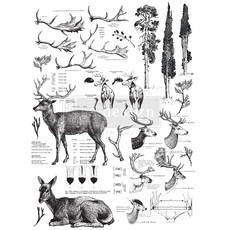 Redesign with Prima Redesign - Decor Transfer - Deer