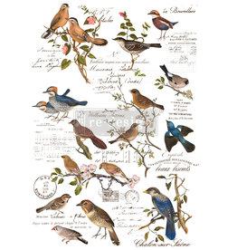 Redesign with Prima Redesign - Decor Transfer - Postal Birds