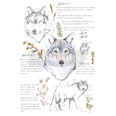 Redesign with Prima Redesign - Decor Transfer - Gray Wolf