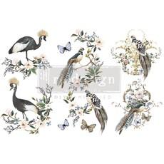 Redesign with Prima Redesign - Decor Transfer - Rare Birds