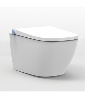 Sanitear wc met bidet HYG71