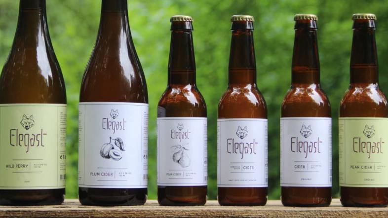 Ambachtelijke Nederlandse Cider