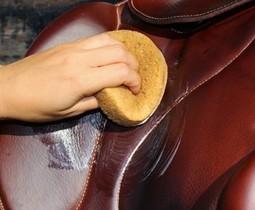 Zadel, laarzen en hoofdstel reinigen en onderhouden