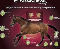 Supplementen om je paard van binnenuit te ondersteunen