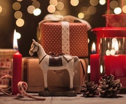Sinterklaas en kerstcadeautjes voor jouw paard