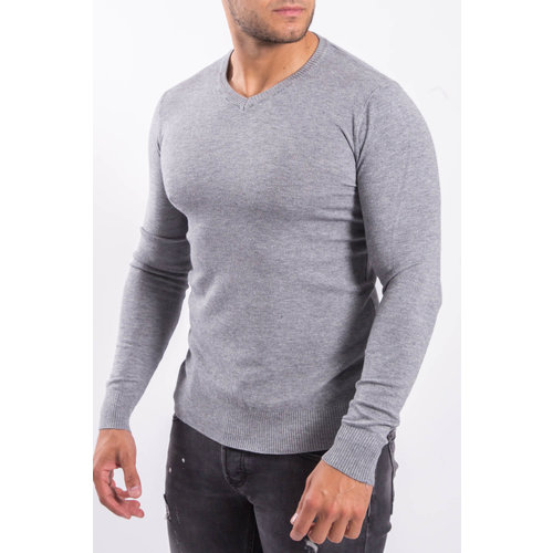 Y Pullover trui V-hals Grey