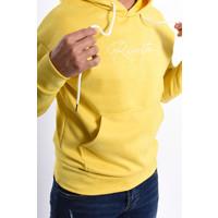 Y Hoodie 'Revolta' Suede look Geel