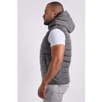 """Y Bodywarmer hooded """"paul"""" Grey"""