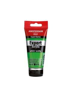 Amsterdam Amsterdam expert 75ml acrylverf 618 Permanentgroen licht