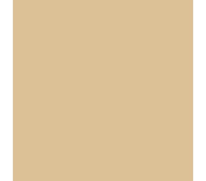 Brushmarker Sandstone