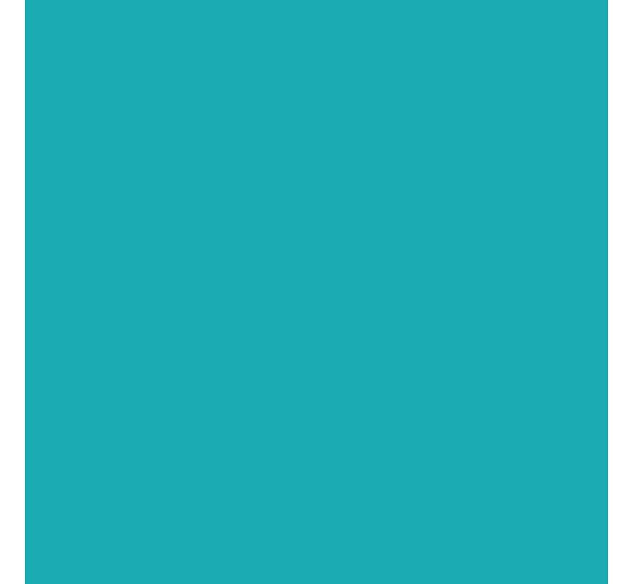 Brushmarker Turquoise