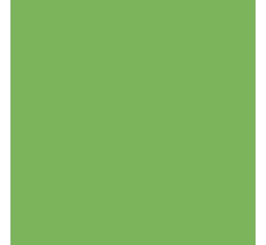 Pigment Marker Sap Green