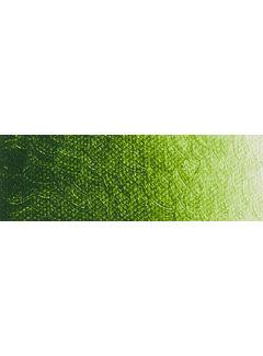 ARA Artist acrylverf 250ml Sapgreen Lake Extra C292