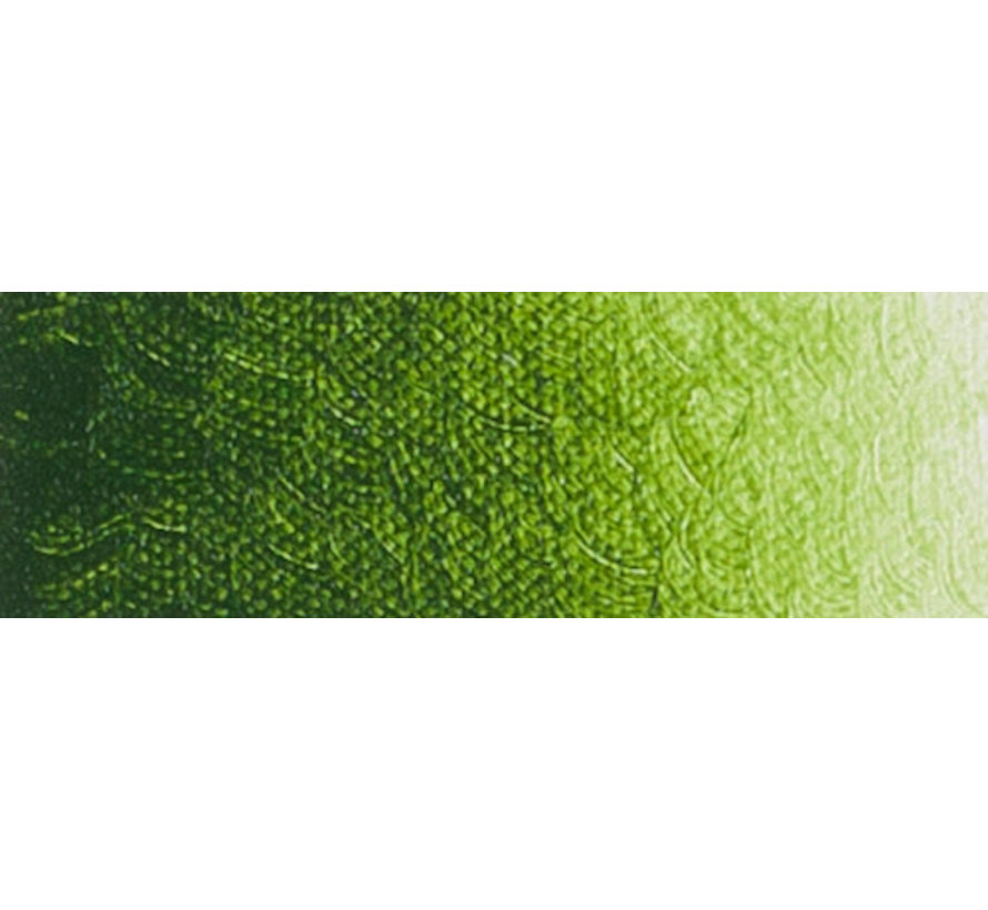Artist acrylverf 250ml Sapgreen Lake Extra C292
