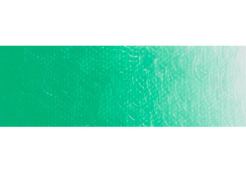 ARA Artist acrylverf 250ml Permanent Green Light B277