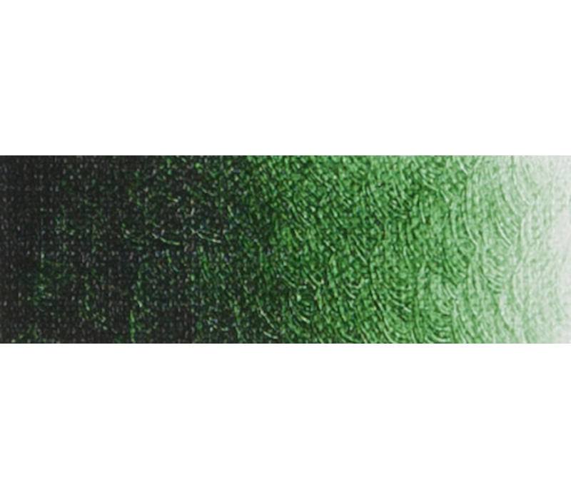 Artist acrylverf 250ml Hooker's Green Lake Deep B301