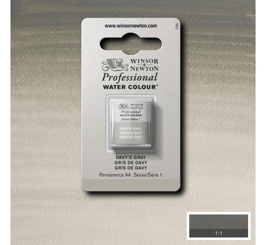 W&N pro. aquarelverf halve nap Davys Grey S1