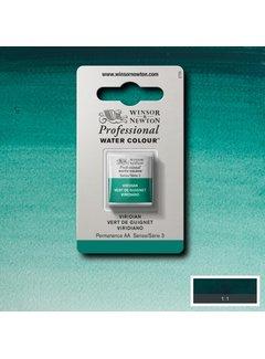 Winsor & Newton W&N pro. aquarelverf halve nap Viridian S3