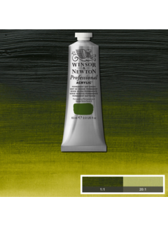 Winsor & Newton Professional acrylverf 60ml Permanent Sap Green