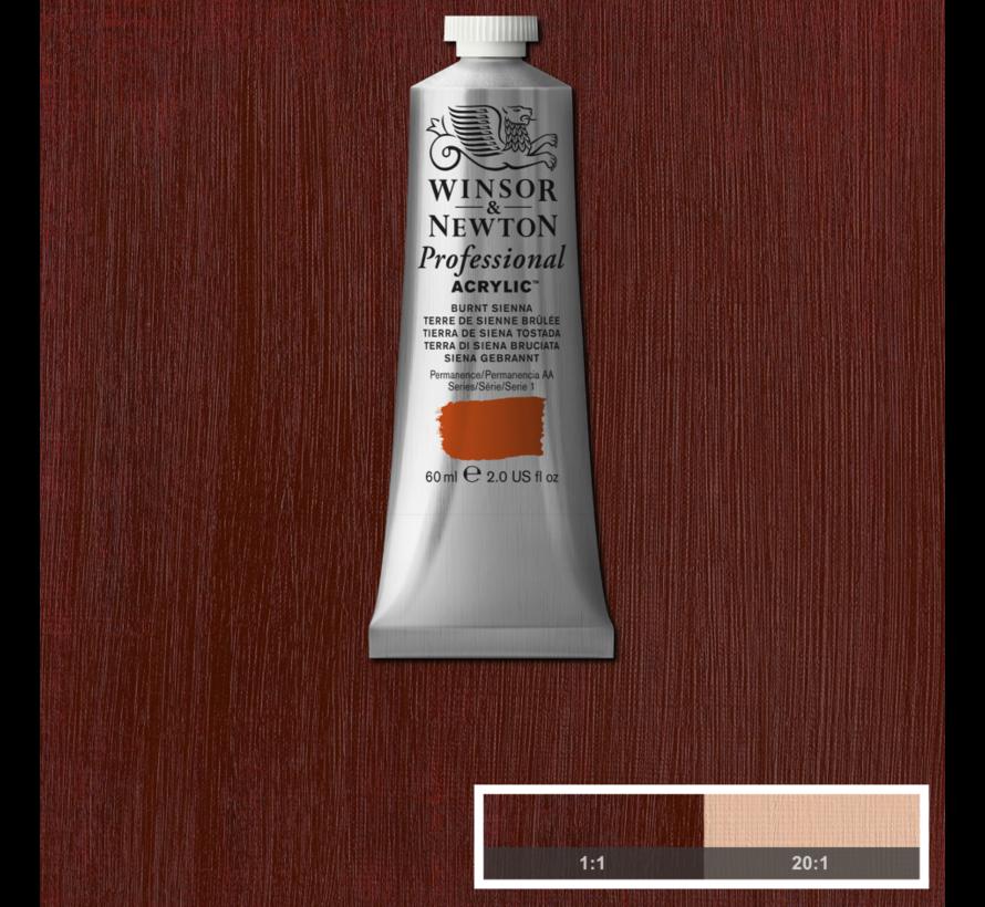 Professional acrylverf 60ml Burnt Sienna