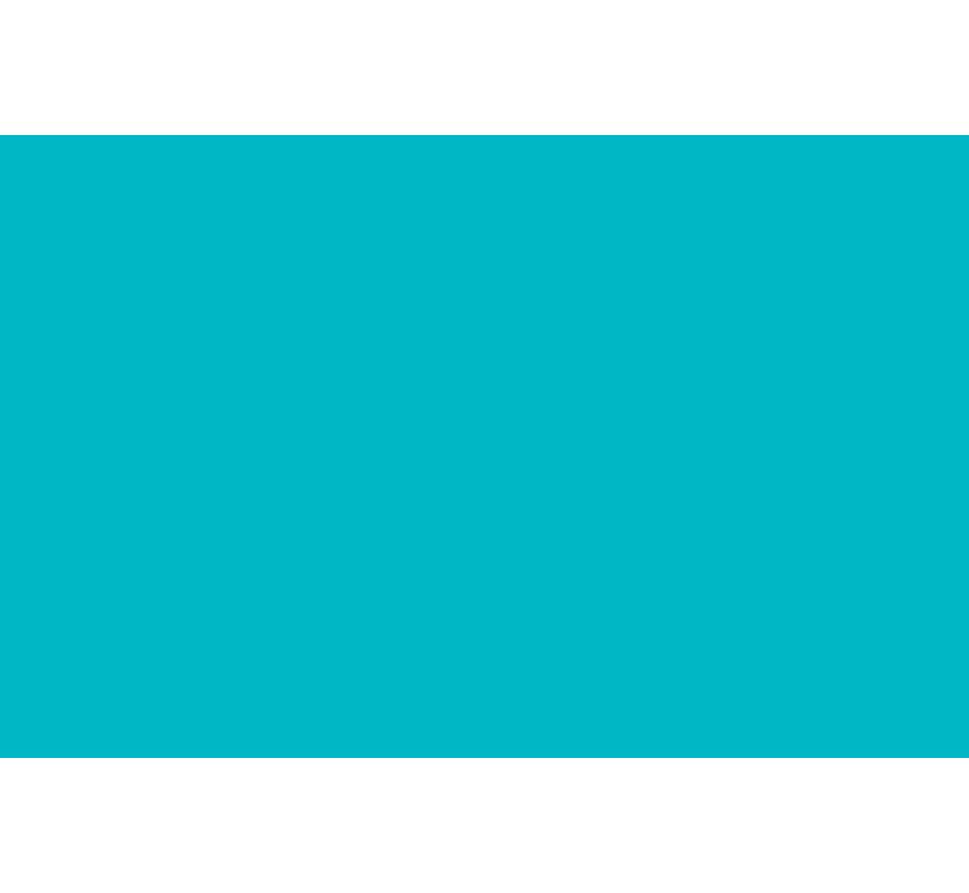 Liquitex acrylverf spuitbus 400ml Turquoise