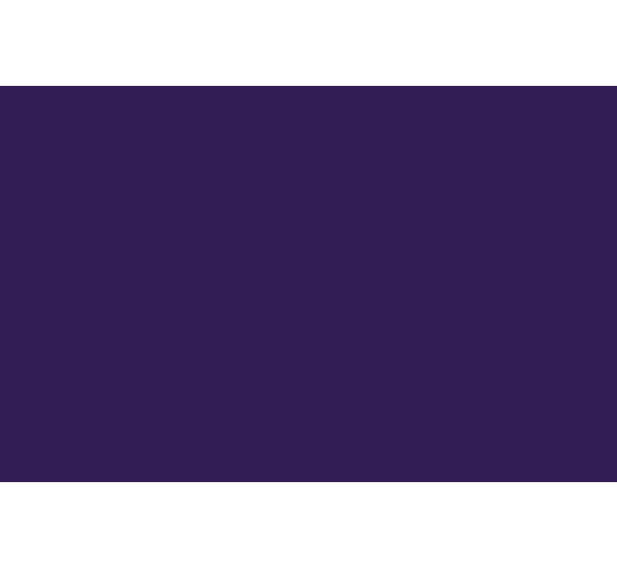 Liquitex acrylverf spuitbus 400ml Dioxazine Purple