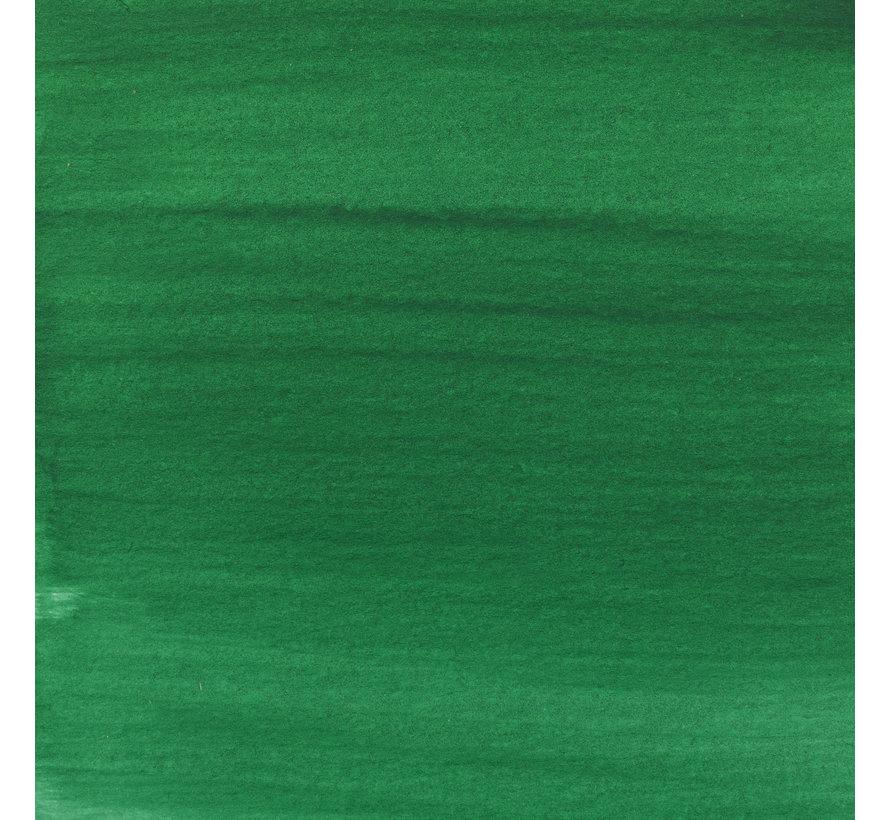 Acrylic Inkt Fles 30 ml Paul Veronesegroen 615