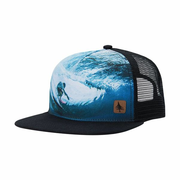 Hippy Tree Perspective Cap