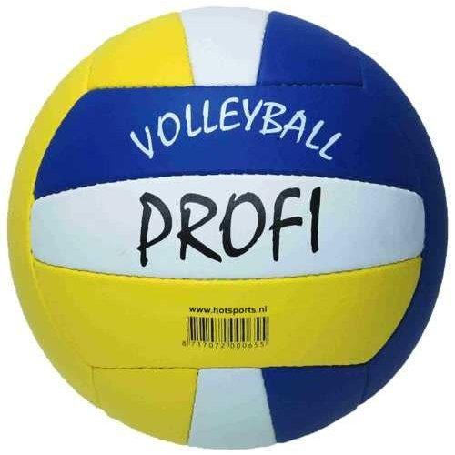Volleyball Beach Profi Leather