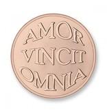 Mi Moneda Munt Amor & Mio Rosegold plated MON-AMO-03