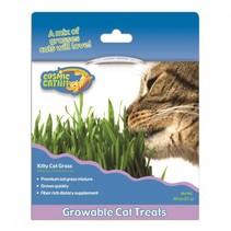 Cosmic catnip 0.88 oz kitty grass