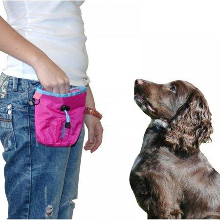 Coachies Coachies puppy treat bag pink K98649