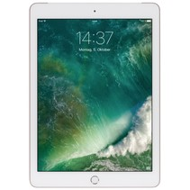 iPad Wi-Fi + Cell 32GB goud