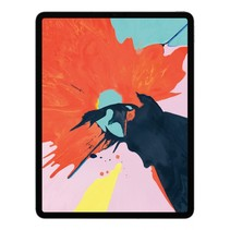 iPad Pro 12.9 Wi-Fi Cell 256GB space grey MTHV2FD/A