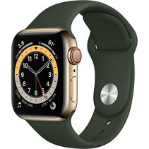 watch series 6 gps + cell 40mm gold steel green sport band